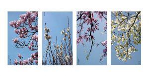 01_AMIE_POTSIC_Made_in_China_SpringSeries.jpg