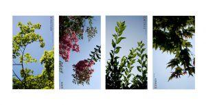 07_POTSIC_MadeInChina_Summer4series.jpg