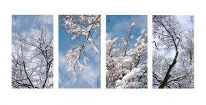 19_POTSIC_MadeInChina_Winter4v2.jpg